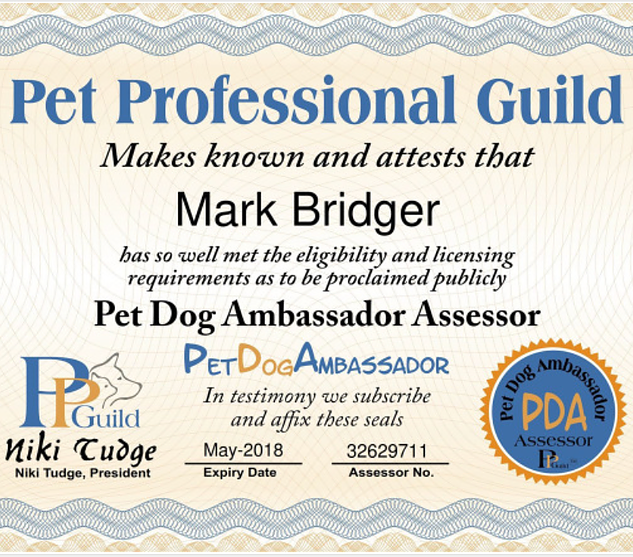 PPG pet dog ambassador
