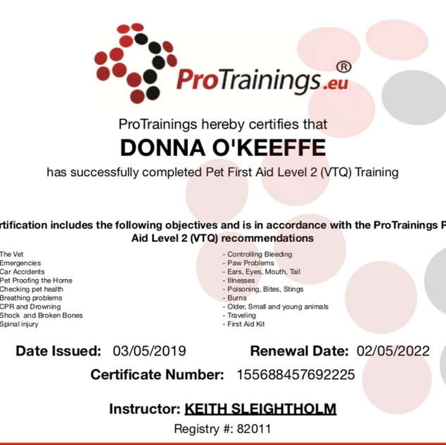 protrainings first aid cert