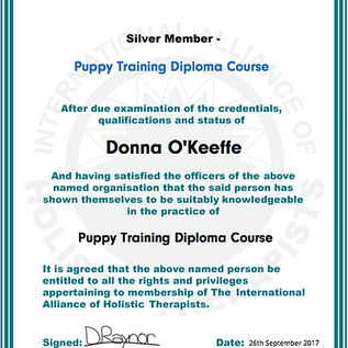 Puppy Training Diploma