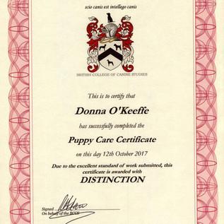 Puppy Care.jpg
