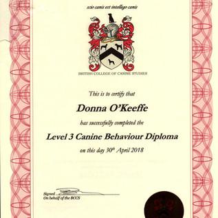 Level 3 Canine Behaviour Diploma.jpg