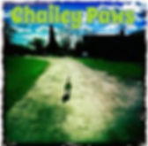 Chailey Paw Dog Walking & Boarding