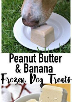 Peanut Butter & Banana Frozies