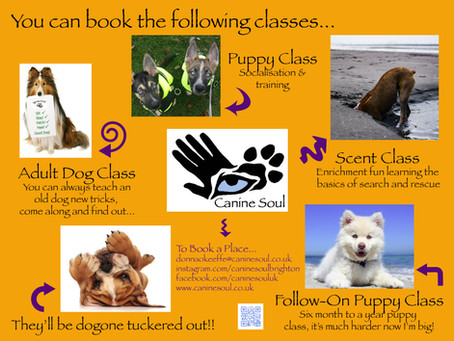 More Classes what more can you want....