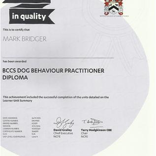 Dog Behavioural Practisioner Diploma