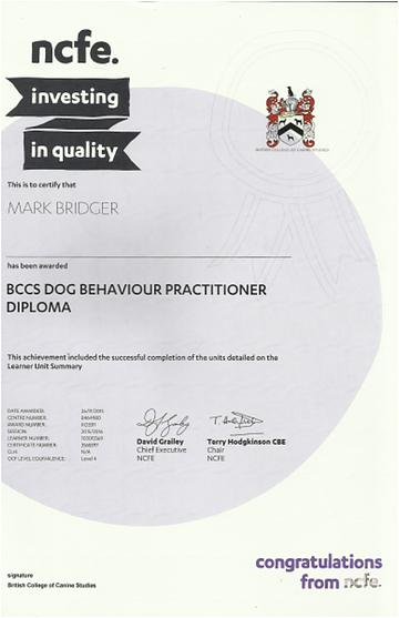 Dog Behavioural Practisioner Diploma