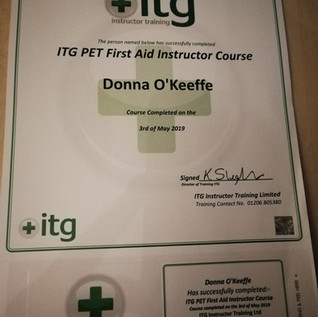 First Aid Instructor Certificate