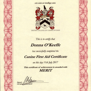 Canine First Aid.jpg