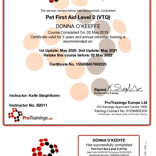 First Aid Instructor pro training