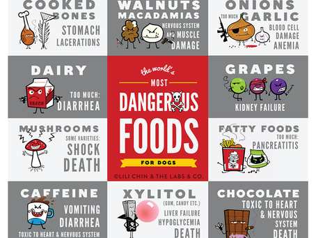 Toxic Food Poster
