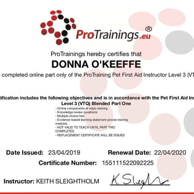 protraining first aid trainer cert