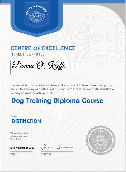 Dog Training Diploma