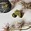 Thumbnail: Flower Power Brass Ring