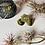 Thumbnail: Sunlight Brass Ring