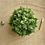 Thumbnail: Long Post Brass & Bone Necklace