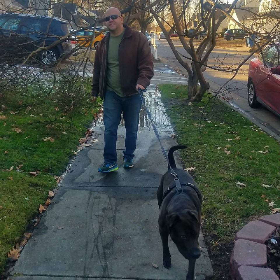 Taking a dog for a dog walk during a pet sitting visit