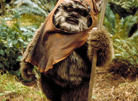 Pet Sitting Ewoks and Other Star Wars Creatures
