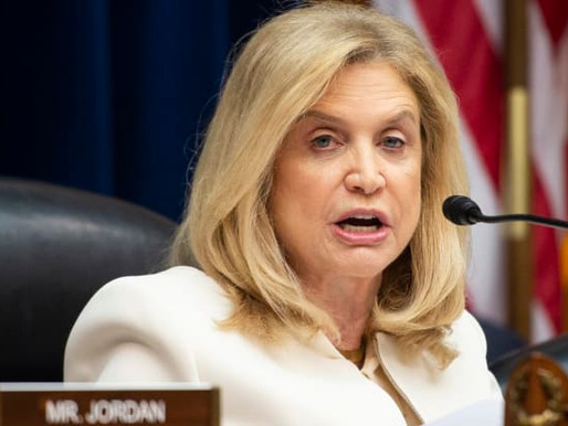 US Congresswoman Maloney urges release of political prisoners in Turkey