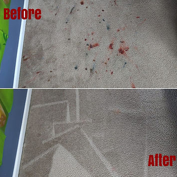 carpetsbeforeandaftercarpetsplus.jpg