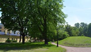 Alexandra Gart, Yuri Shtapakov «What Do Trees Remember?»