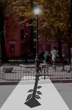 Andrea Steudel «Street Sign Secrets»