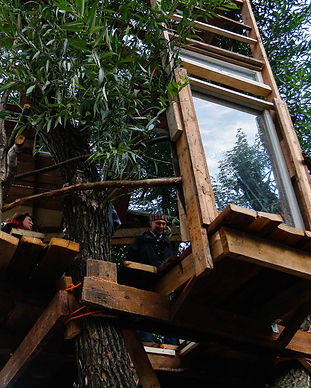 tree_house_by_Uliana_Yastrebova_2.jpg