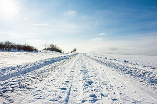 road-5940853.jpg