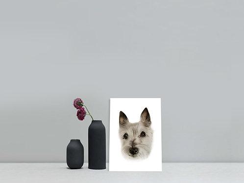 Gift Voucher -Mini 5x7 inches