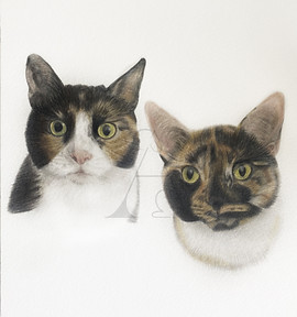 Esme & Cleo