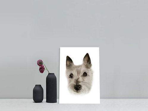 Gift Voucher - Small 8 x 10 inches