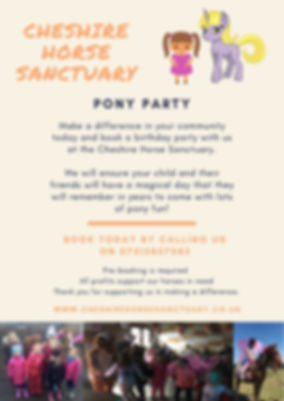 Cheshire Horse Sanctuary Pony Party.jpg