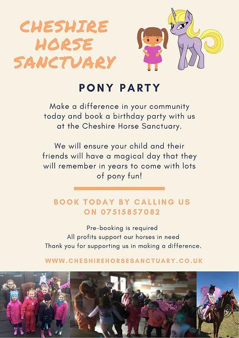 Cheshire Horse Sanctuary Pony Party.jpg