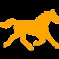 Cheshire Horse Sanctuary Ltd - Contact Us
