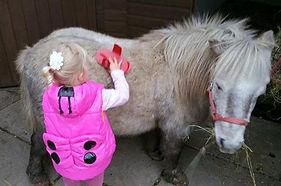 Magic - Cheshire Horse Sanctuary