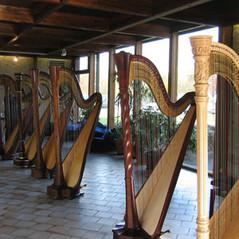 expo de harpe.jpg