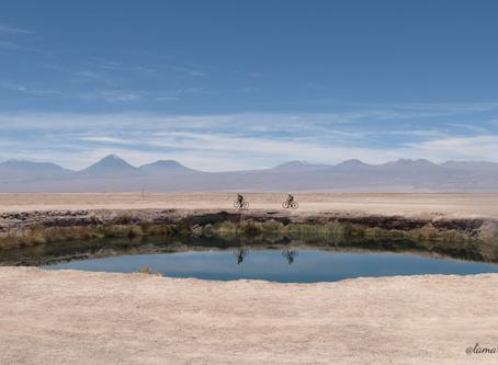 A l'assaut des lagunes chiliennes | désert d'Atacama-Chili