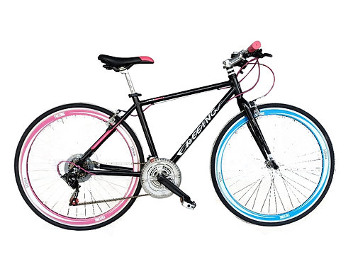 Sonia Freeing City Bike
