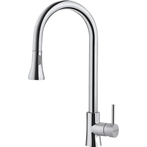 Kitchen Sink Faucet - SS1101 | Swivel Spout Pull-Out Dual Spray Mixer Tap