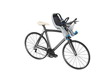 Thule RideAlong Mini 1.jpg