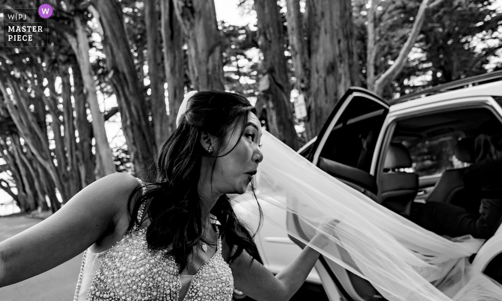 wedding-photographer-2473776.jpg