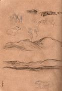 Mountain and sheep studies, pencil and c