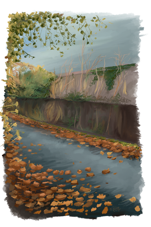 Quick canal study.png