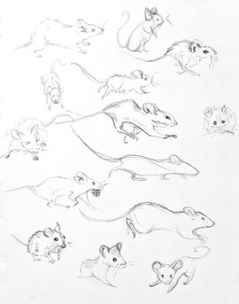 Mouse sketches.jpeg
