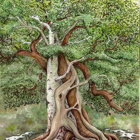 Triad Tree Commission
