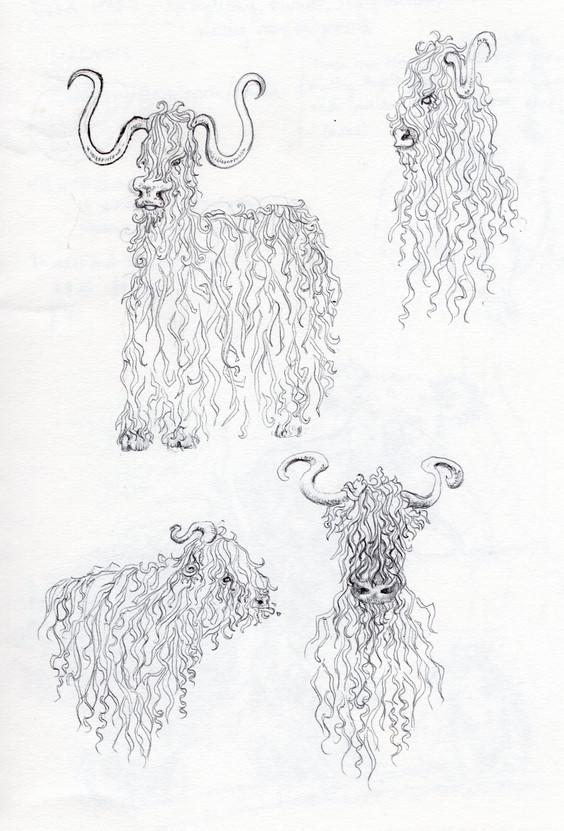 Alternative Highland cows, biro, 2020