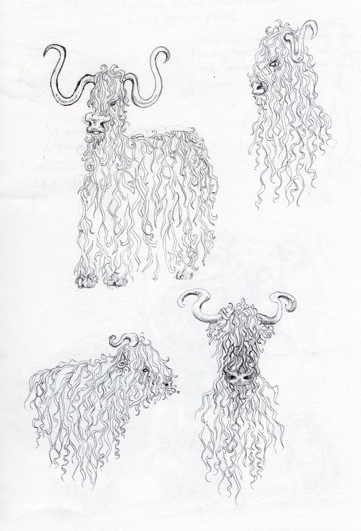 Alternative Highland cows, biro, 2020