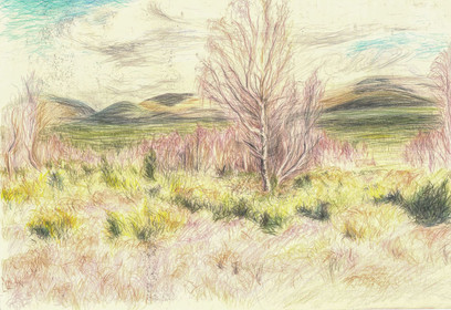 White Well, 2016, Coloured pencil