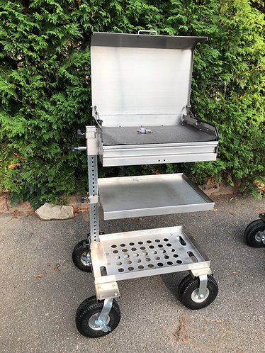 Custom Dental / Veterinary cart