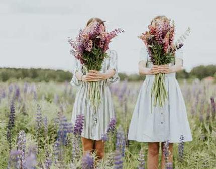 organic-kids-fragrance-lavender-500px.jp