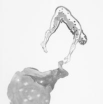 Skin and Ghosts monoprint series VI, 2006